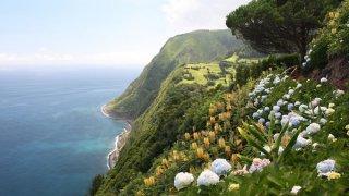 acores flores - voyage portugal açores et madère - terra lusitania