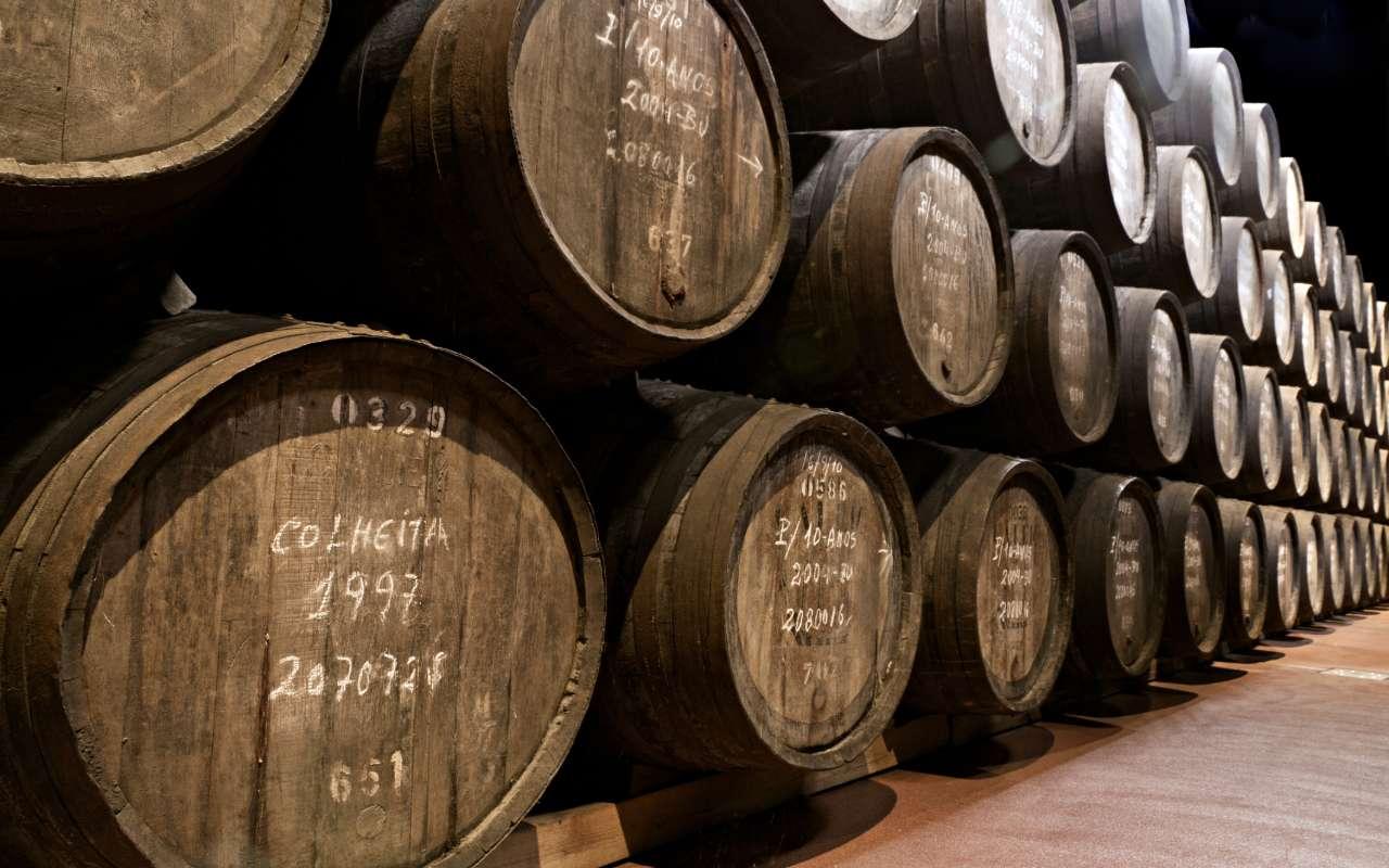 vignobles douro - voyage portugal açores et madère - terra lusitania