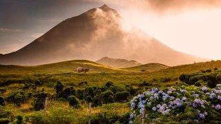 Sur la route des volcans de l'Atlantique aux Açores