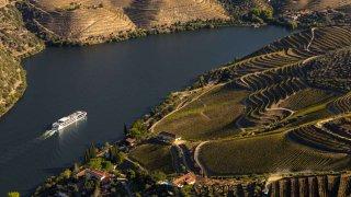 Gastronomie au Portugal au coeur des vignes du Douro