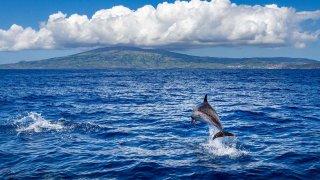 Cap sur les Açores en famille