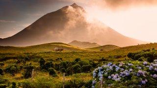 L'essentiel des Açores