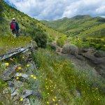 La Vallée du Côa, la rivière aux mille gravures