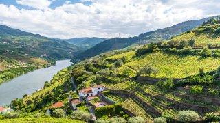 vallée douro vignes - voyage portugal açores et madère - terra lusitania