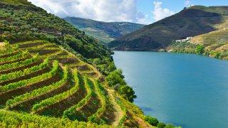 vallée douro vignobles - voyage portugal açores et madère - terra lusitania